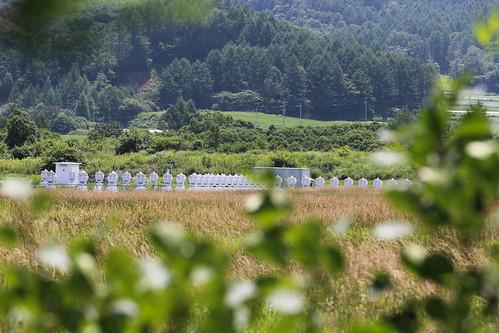 Nobeyama Radio Observatory_10