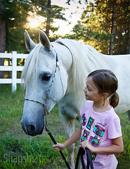 little girl with grey mare
