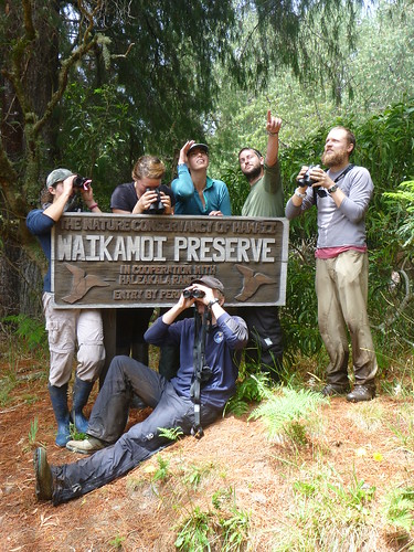 The 2013 team at TNC's Waikamoi Preserve sign. From left to right: Laura Berthold, Teia Schweizer, Lexi Journey, Keith Burnett, Chris Warren. Bottom: Robert Taylor.