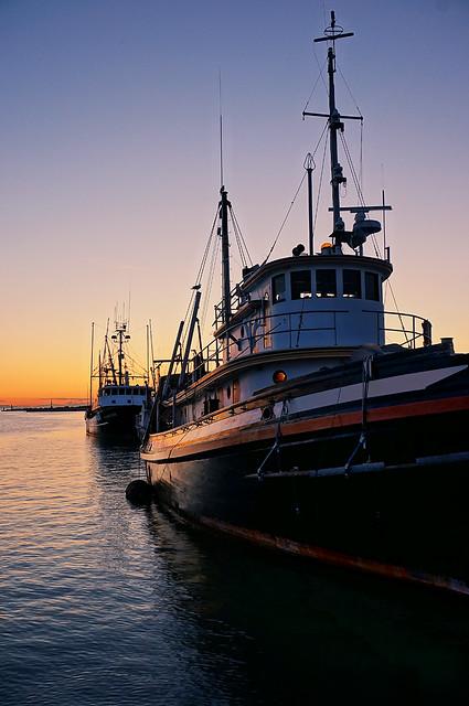 Richmond Steveston Marina at Twilight