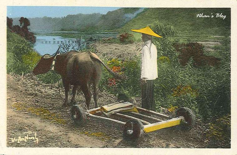 xe bò Lai Chaui