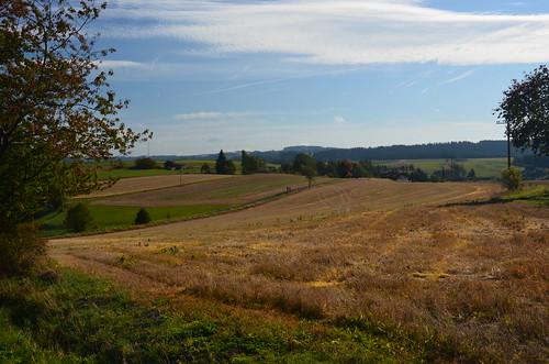 Blick auf eine goldene Landschaft