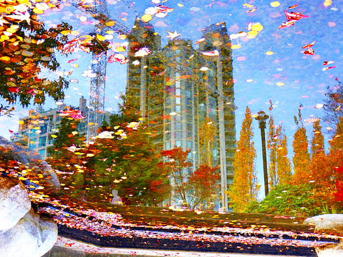 Water Art: Submerged autumn dreams