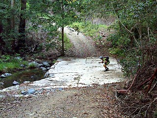 Creek Crossing, Scrub Road