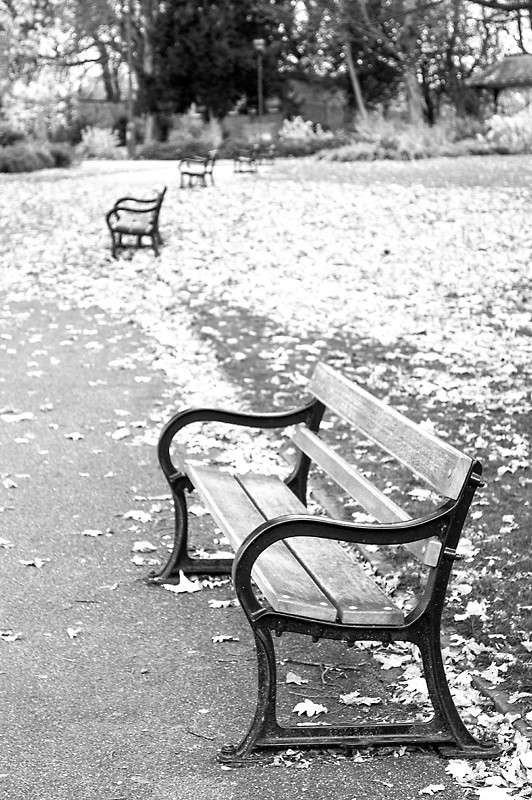 weston park sheffield billy clapham black and white bench park