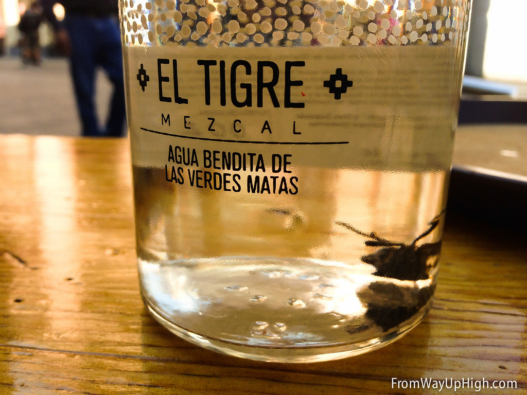 Grasshoppers in the mezcal in Mexico City