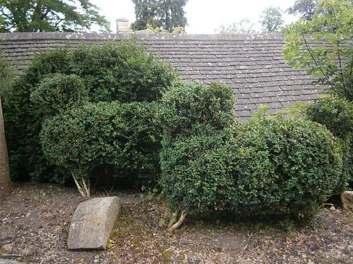 Peto Garden