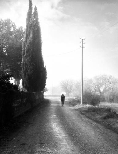 A stroll on a foggy morning