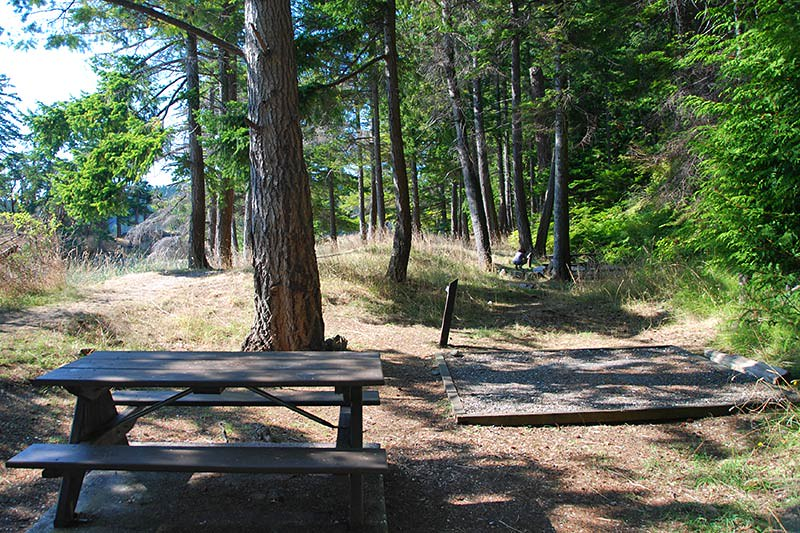 Tent Pad in the Campground in Beaumont Marine Park, Bedwell Harbour, South Pender Island, Gulf Islands National Park, British Columbia, Canada