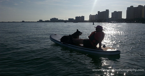 Moose and Sandra hanging out on Clearwater Harbor. Moose got to check out dolphins while riding on the sup board.