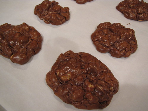 Nutty Chocolate Cookies (GF)