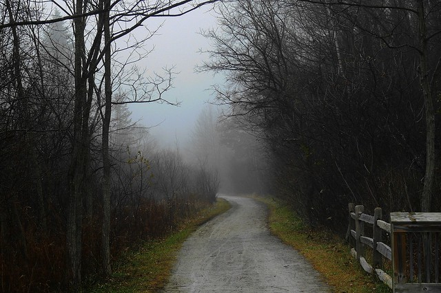HFF-with  winding path and fog