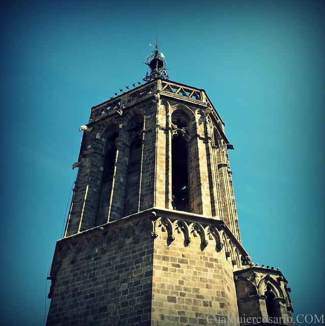 Mañaneando primaveras por los techos de Santa María del Mar