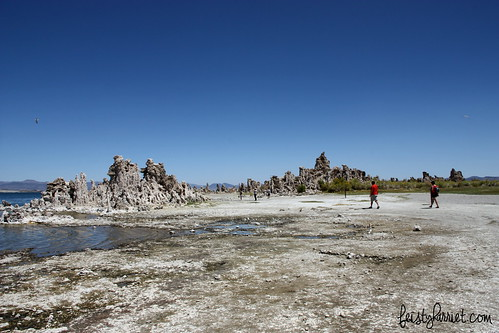 Mono Lake CA (9) Aug 2013_feistyharriet