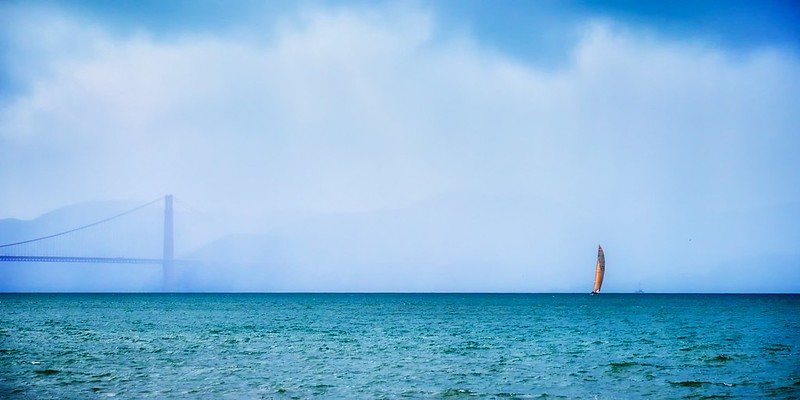 Voile tendue sur la baie de San-Francisco/Full sail on the San Francisco Bay/Vela tendida sobre la Bahia de San Francsico