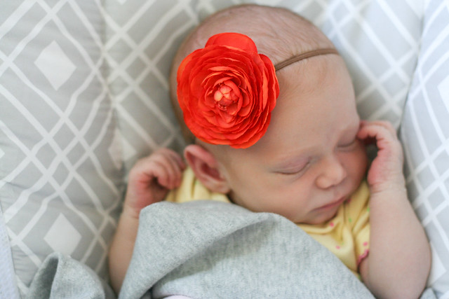 Cora Penelope | yourwishcake.com
