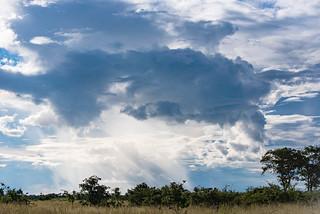 Regenwolken in der Linyanti-Region