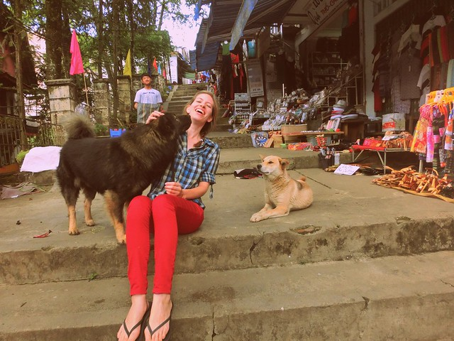 Playing with dogs in the streets of Sapa, Vietnam