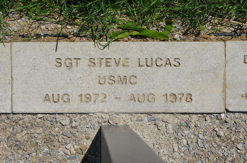 Lucas, Steve