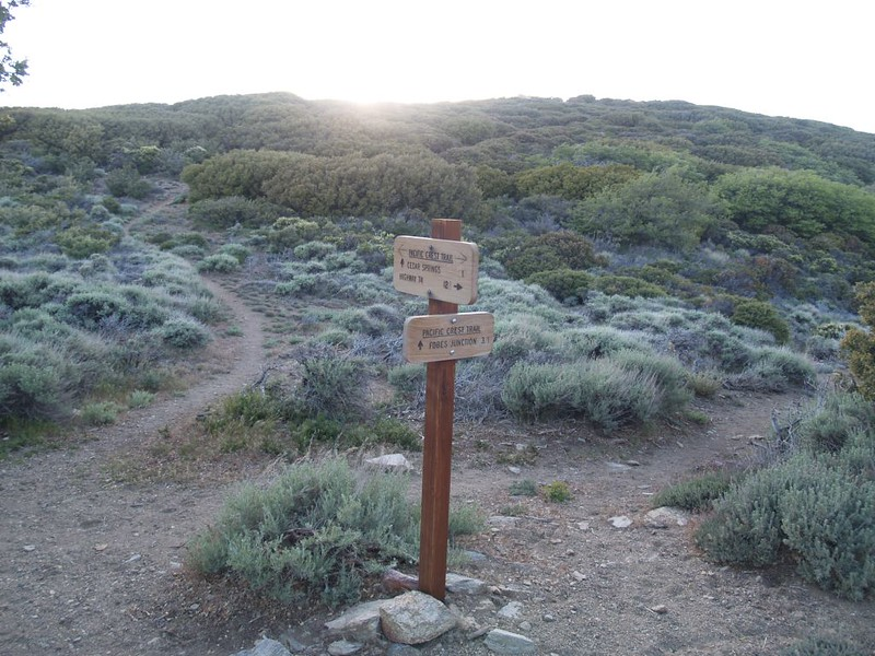 Trail Junction where the Pacific Crest Trail intersects the Cedar Springs Trail (4E17)