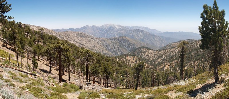 PCT - Panorama view southeast toward Mount Baldy from the southwest ridge of Throop Peak