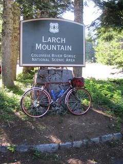 Larch Mountain MLCM
