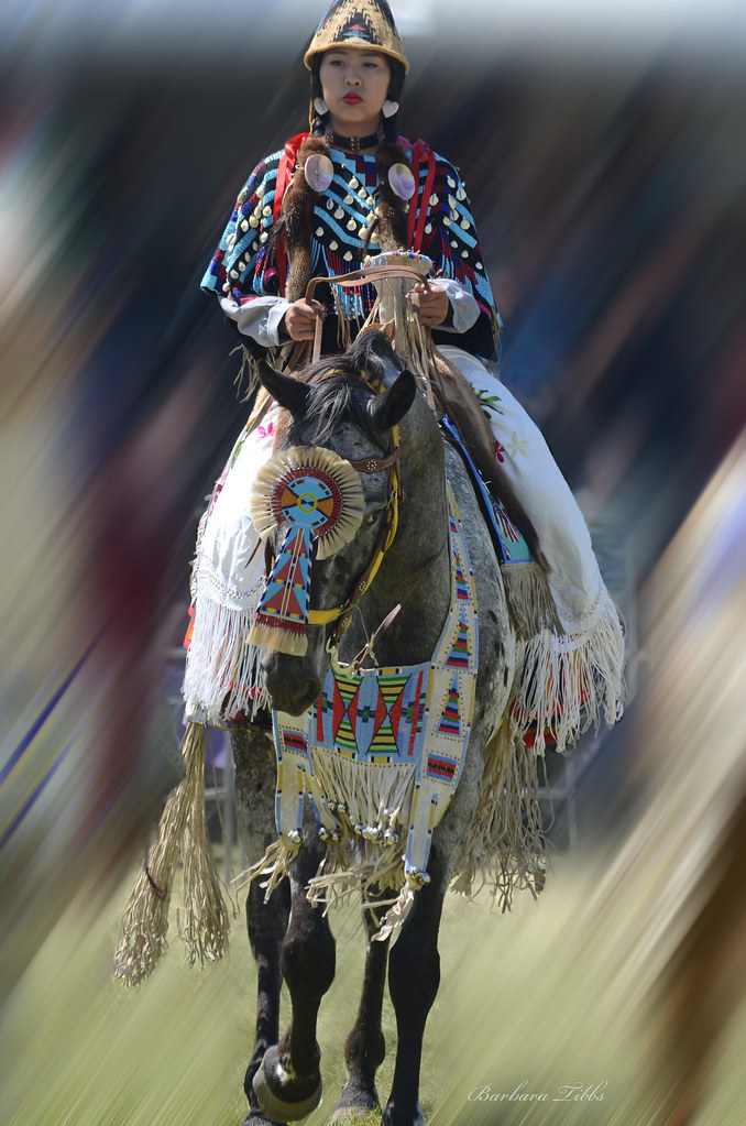 Julyamsh Appaloosa Horse Parade | Another participant in com