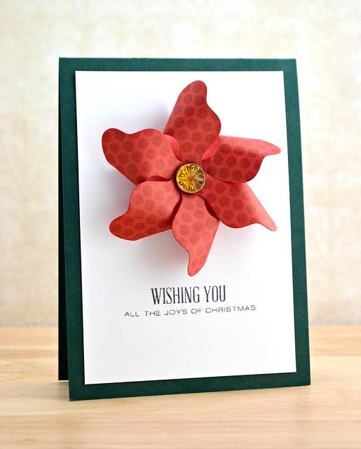 Pinwheel Poinsettia