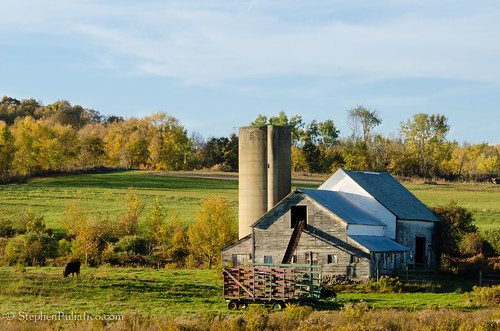 Fall Day on a Galway Farm by UpstateNYPhototaker