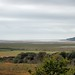 Small photo of Ynis Hir - Wales