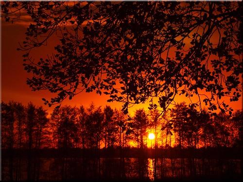 trees sunset lake water geotagged deutschland see evening wasser mood sonnenuntergang bäume deu schleswigholstein scharbeutz olmypus pönitzamsee e620 deutschlandabendstimmung geo:lat=5403948590 geo:lon=1068909070