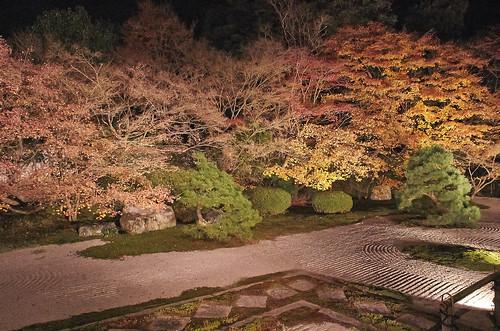 【写真】2013 紅葉 : 天授庵/2020-05-17/IMGP3755