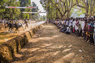 Kambala Audience