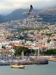 Portugal, l'île de Madère, Funchal