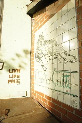 Live Life Free