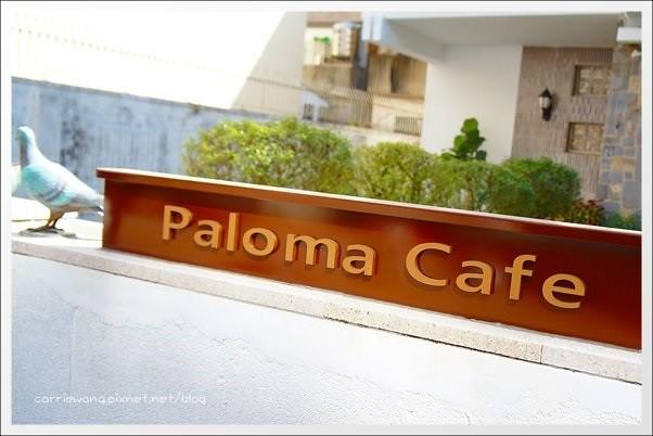 Paloma (3)