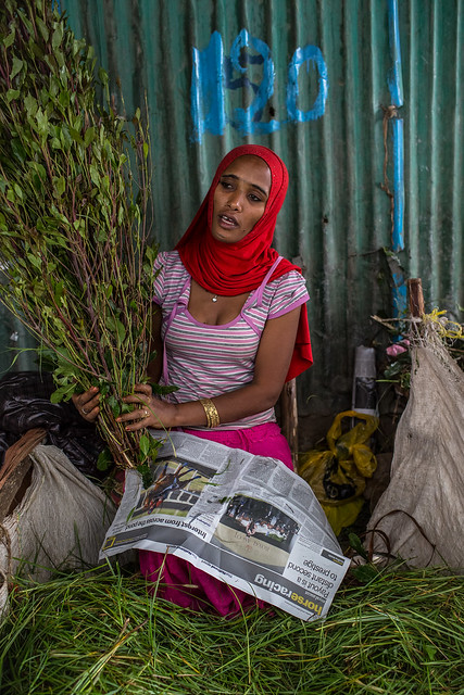 woman the sale of qat (natural plant drug) at the bati market