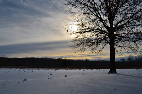 park morning winter columbus ohio sky sun snow cold tree nature field weather clouds big day metro cloudy meadow meadows rollers highbanks metroparks2014