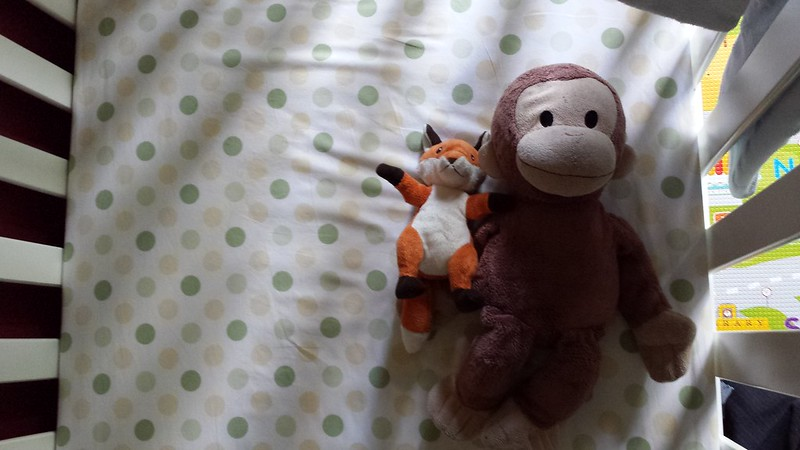 Bubby Fox and Monkey in bed - waiting for Eskil