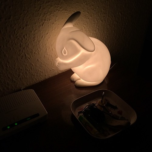 My bunny nightlight is keeping the hallway super cute all night :)