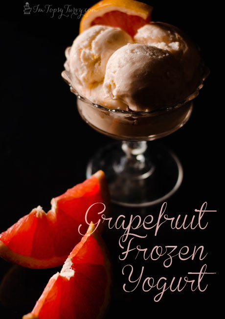 frozen-yogurt-recipe