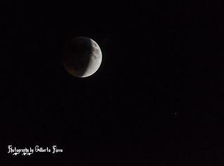Red Moon - Cedar Park/TX - US