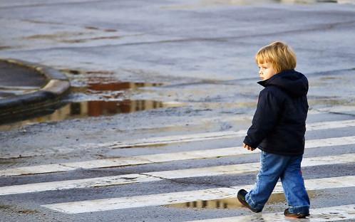 Картинки по запросу дитина переходить дороги