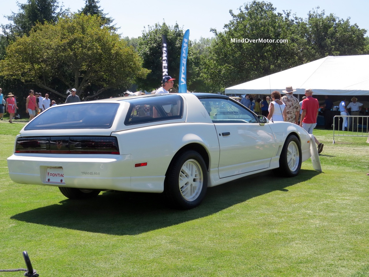 Trans Am Kammback Rear