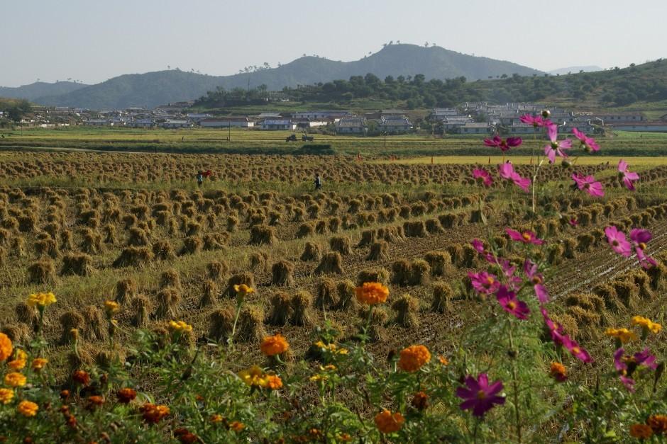 Hamgyeong prov