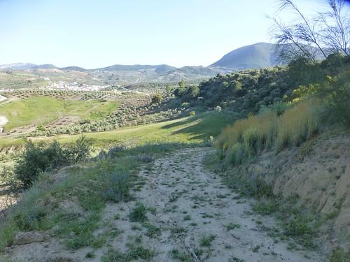 Cortijo Rosario: view from bee eater site to Algamitas