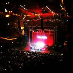 Pensavate di salvarvi dall'album con le foto del concerto? #lamoreelaviolenza #lamoreelaviolenzatour #baustelle #Roma #flickr