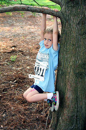 Aut-hanging-on-tree-branch