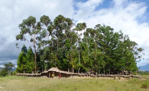 Papua13-Wamena Nord-Wosi -Suroba (6)