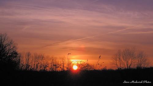trees sky sun clouds sunrise canon earlymorning powershot paintedsky g12 smack53
